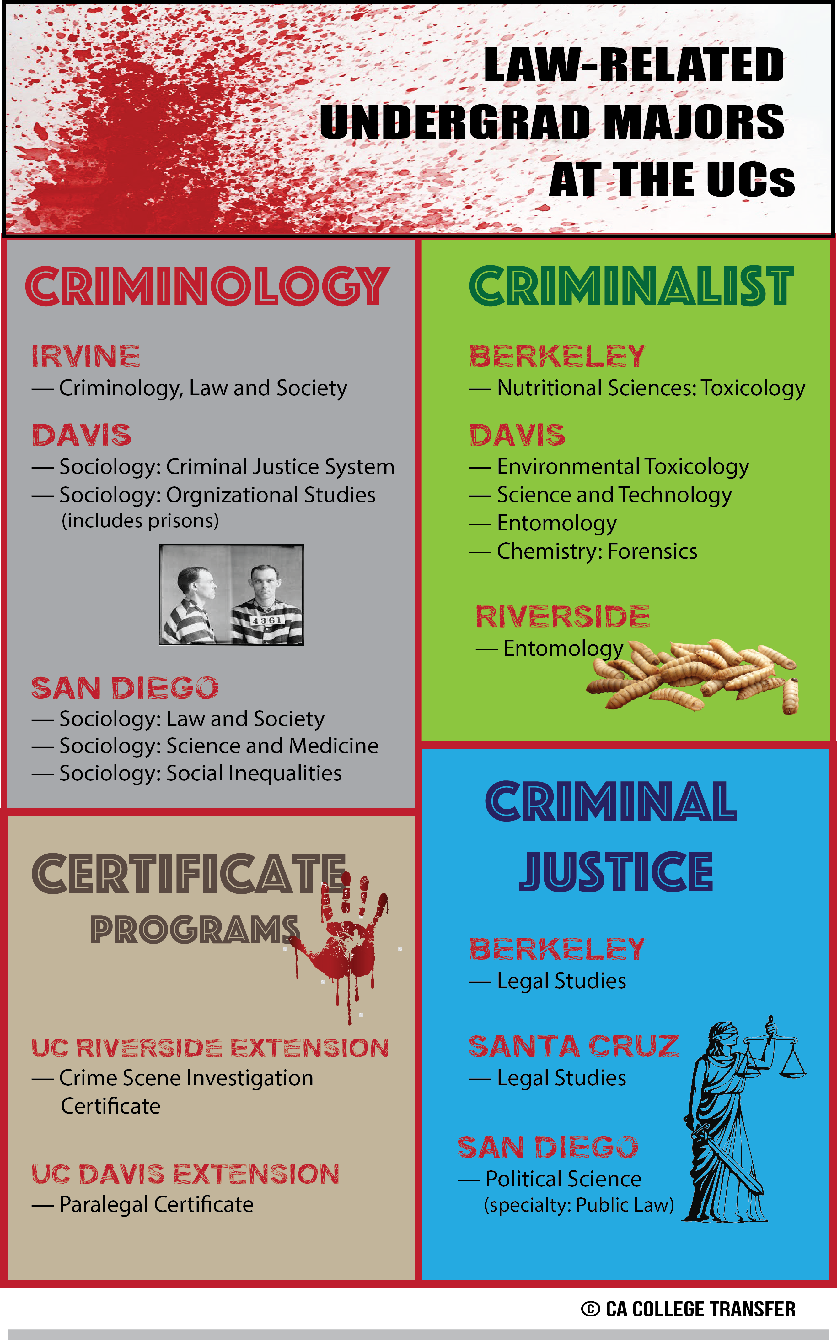 Law-Related Undergrad Majors