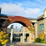 Haas Offers MBA Deferred Enrollment To Cal Undergrads